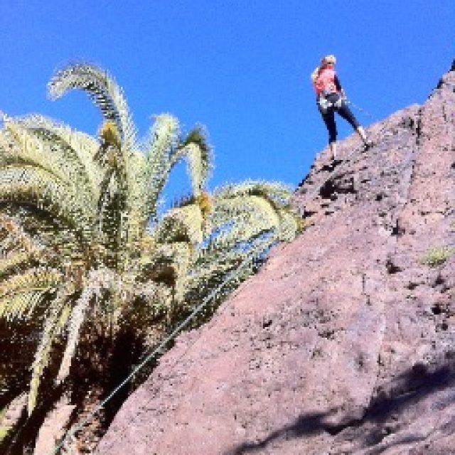 Try climbing